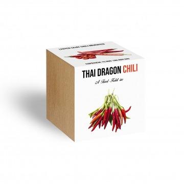 Thai Dragon chili növényem fa kaspóban